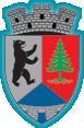 Primaria Darmanesti